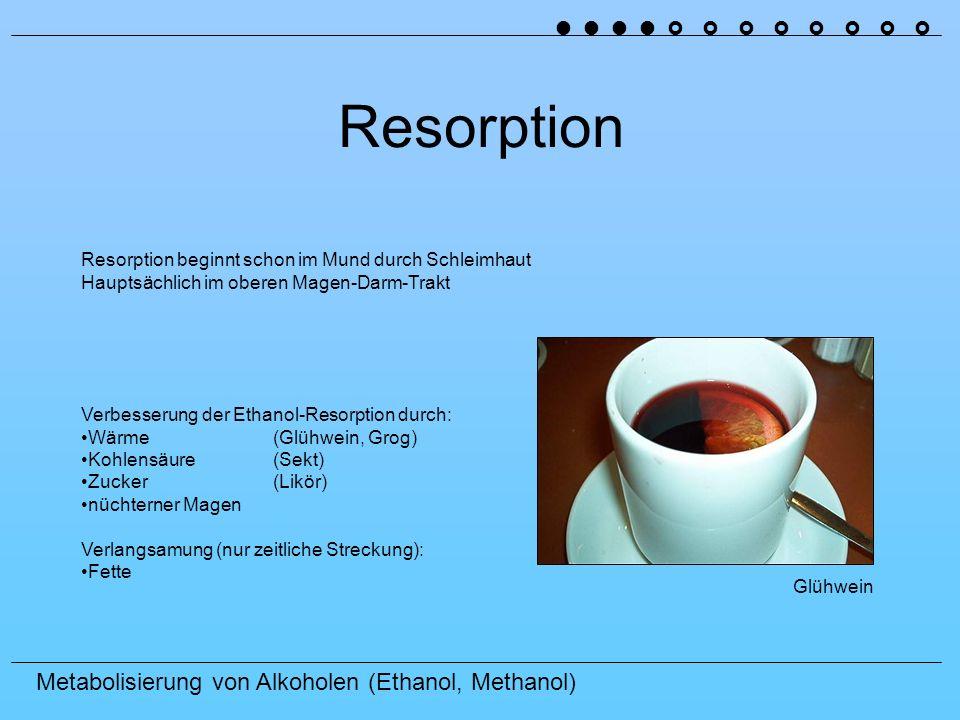 Metabolisierung von Alkoholen (Ethanol, Methanol) Resorption Verbesserung der Ethanol-Resorption durch: Wärme(Glühwein, Grog) Kohlensäure(Sekt) Zucker