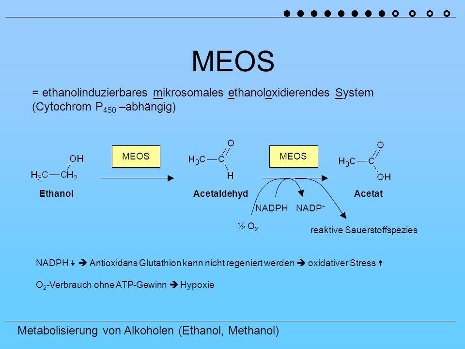 Metabolisierung von Alkoholen (Ethanol, Methanol) Weitere Auswirkungen Acetyl-CoA Acetat + CoA-SH + ATP + AMP + PP i Thiokinase Acetyl-CoA kann nicht weiter im Citratzyklus umgesetzt werden (blockiert durch NADH) Acetyl-CoA Ketonkörper weitere Azidose Abbau von Acetat Acetaldehyd Acetaldehyd ist hochreaktiv und bindet kovalent an andere Proteine und stört damit deren Funktion, dies kann bis zum Zelltod führen Außerdem können so antigene Determinantien entstehen Immunreaktion Umwandlung von Sternzellen in myofibroblastenartige Zellen Fibrosierung