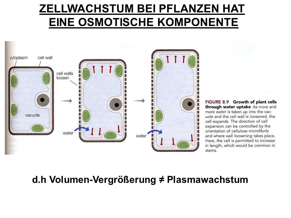 ZELLWACHSTUM BEI PFLANZEN HAT EINE OSMOTISCHE KOMPONENTE d.h Volumen-Vergrößerung Plasmawachstum