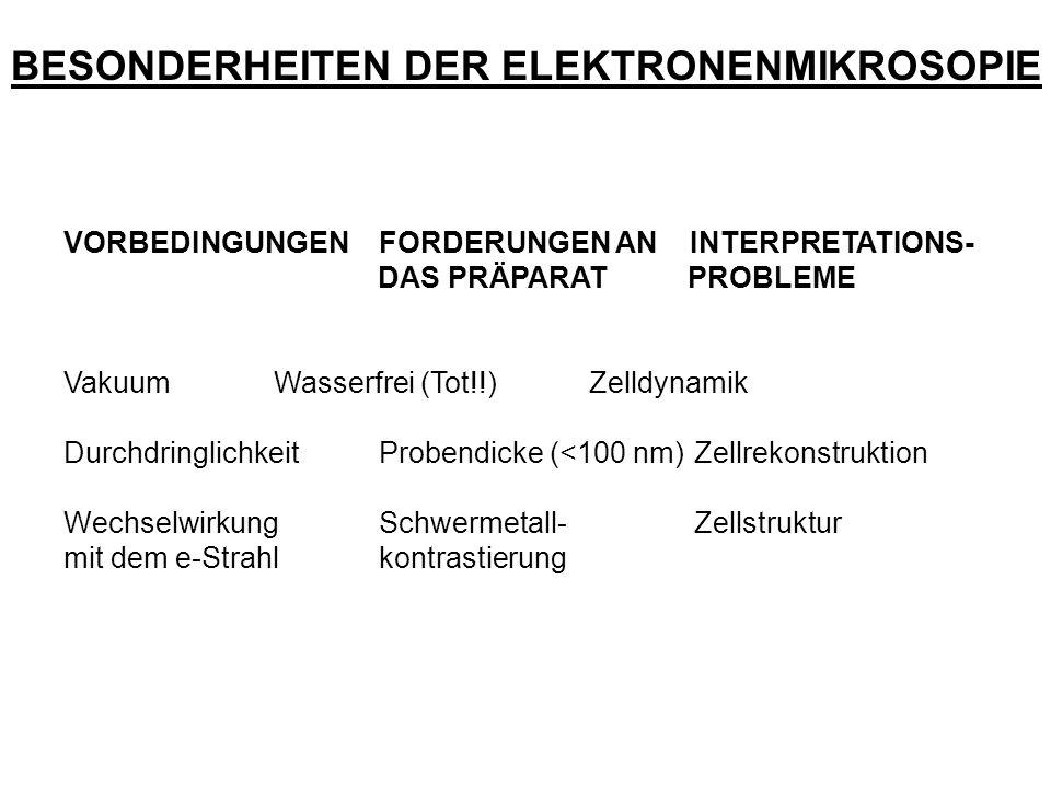 BESONDERHEITEN DER ELEKTRONENMIKROSOPIE VORBEDINGUNGENFORDERUNGEN AN INTERPRETATIONS- DAS PRÄPARAT PROBLEME VakuumWasserfrei (Tot!!)Zelldynamik Durchd