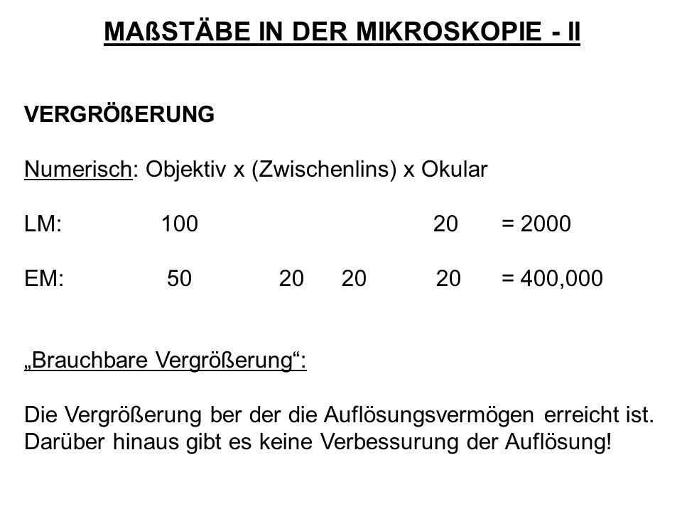 MAßSTÄBE IN DER MIKROSKOPIE - II VERGRÖßERUNG Numerisch: Objektiv x (Zwischenlins) x Okular LM: 10020= 2000 EM: 50 20 20 20= 400,000 Brauchbare Vergrö