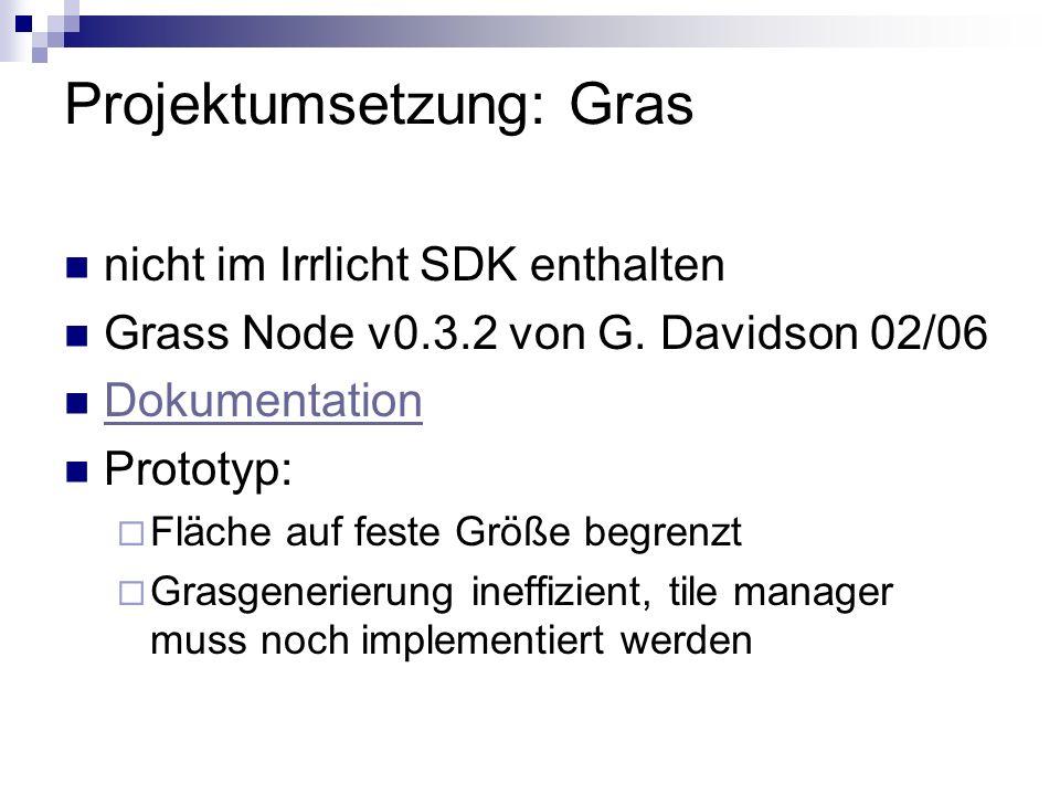 Projektumsetzung: Gras nicht im Irrlicht SDK enthalten Grass Node v0.3.2 von G. Davidson 02/06 Dokumentation Prototyp: Fläche auf feste Größe begrenzt