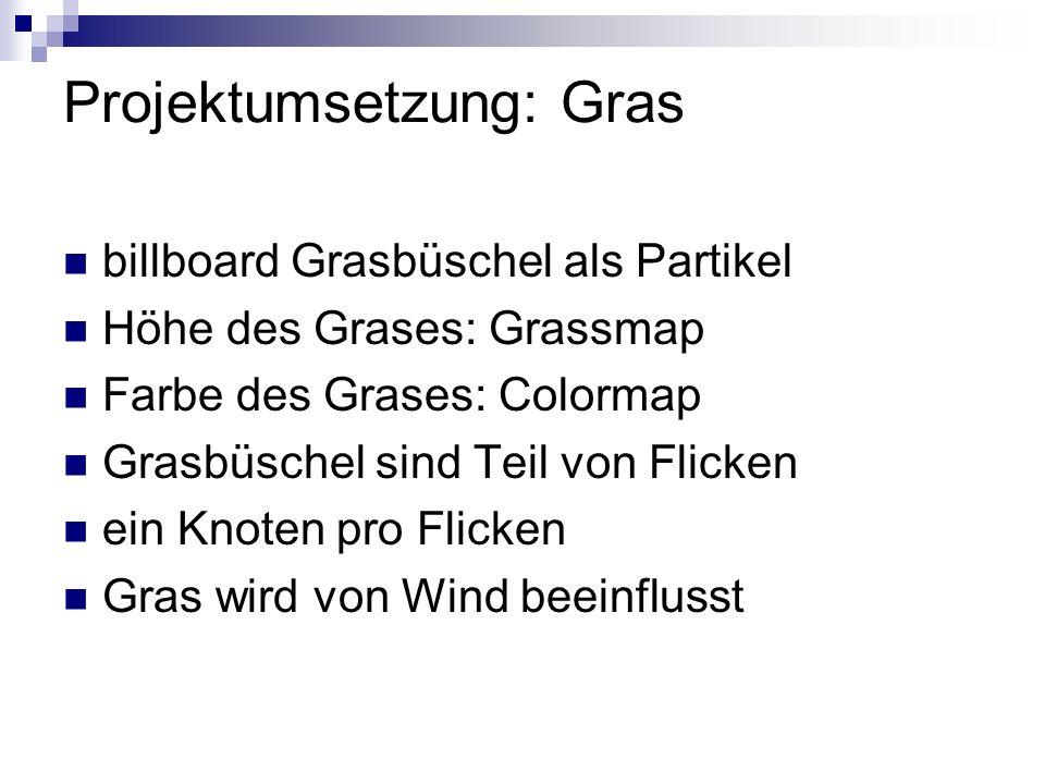 Projektumsetzung: Gras billboard Grasbüschel als Partikel Höhe des Grases: Grassmap Farbe des Grases: Colormap Grasbüschel sind Teil von Flicken ein Knoten pro Flicken Gras wird von Wind beeinflusst