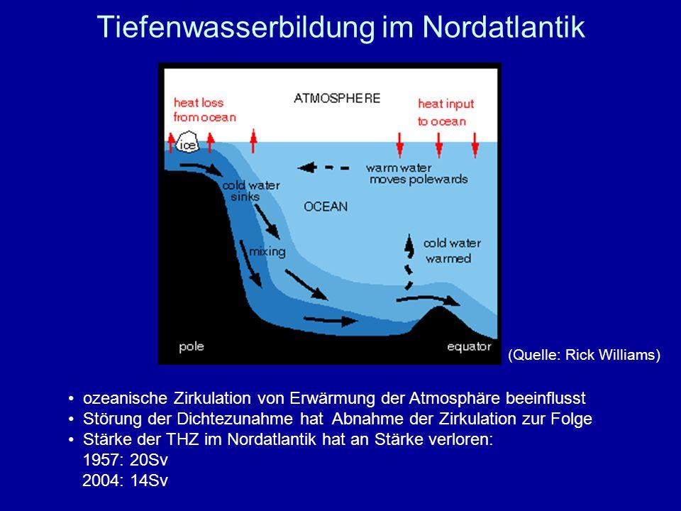 Tiefenwasserbildung im Nordatlantik ozeanische Zirkulation von Erwärmung der Atmosphäre beeinflusst Störung der Dichtezunahme hat Abnahme der Zirkulat
