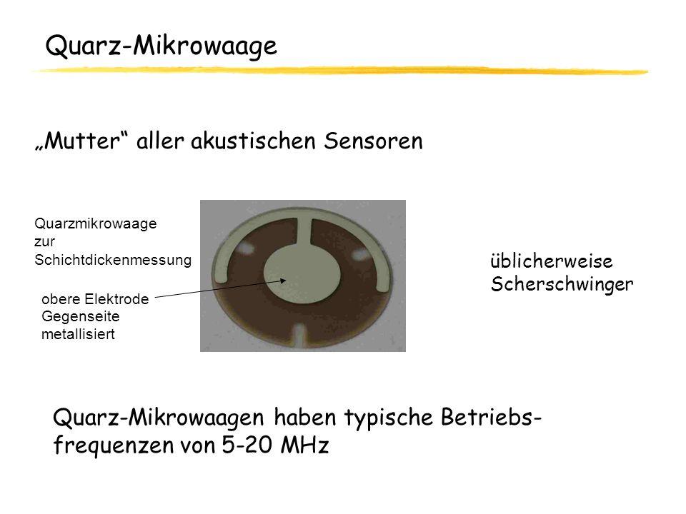 Quarz-Mikrowaage Mutter aller akustischen Sensoren Quarzmikrowaage zur Schichtdickenmessung obere Elektrode Gegenseite metallisiert Quarz-Mikrowaagen