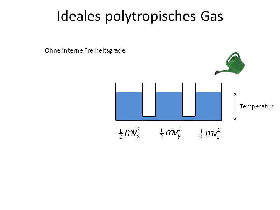 Ideales polytropisches Gas Temperatur Ohne interne Freiheitsgrade