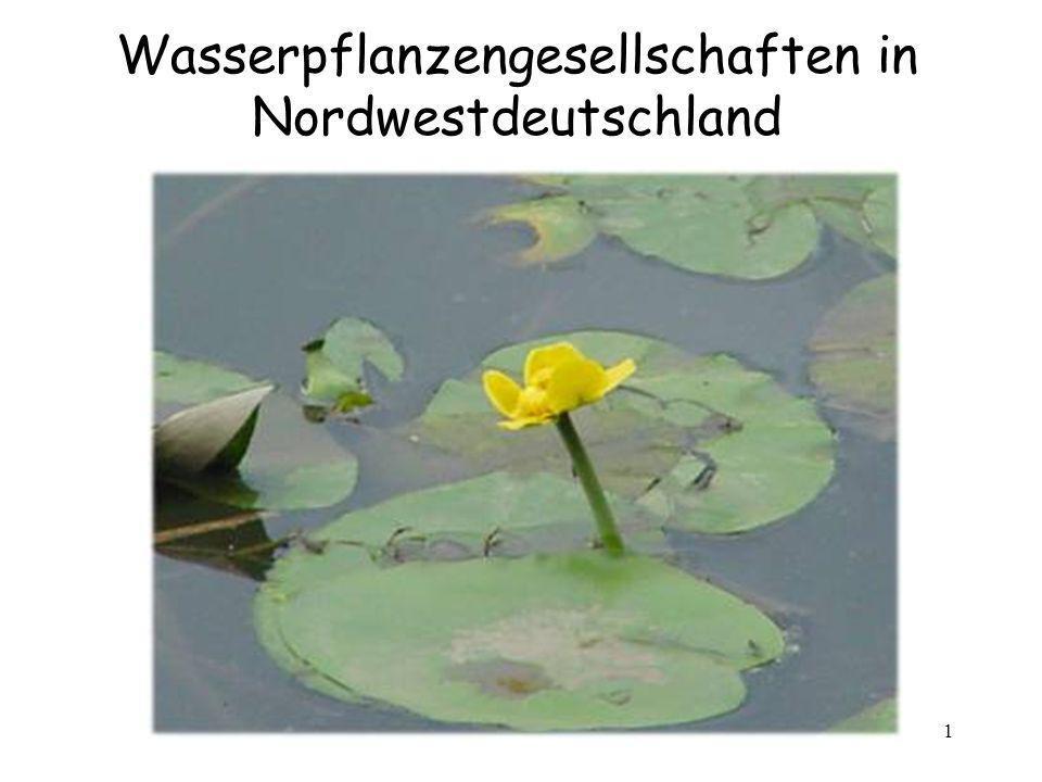 2 Gewässer in Nordwestdeutschland StillgewässerFließgewässer Wenige große Flachseen Vor allem Kleingewässer: -Gräben -Altarme -Fischteiche Mit Abnahme der Fließgeschwindigkeit, Zunahme höherer Pflanzen Gewässer Still- und Fließgewässer sind recht häufig große und tiefe Seen äußerst selten
