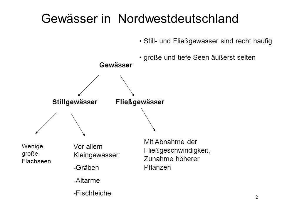 2 Gewässer in Nordwestdeutschland StillgewässerFließgewässer Wenige große Flachseen Vor allem Kleingewässer: -Gräben -Altarme -Fischteiche Mit Abnahme