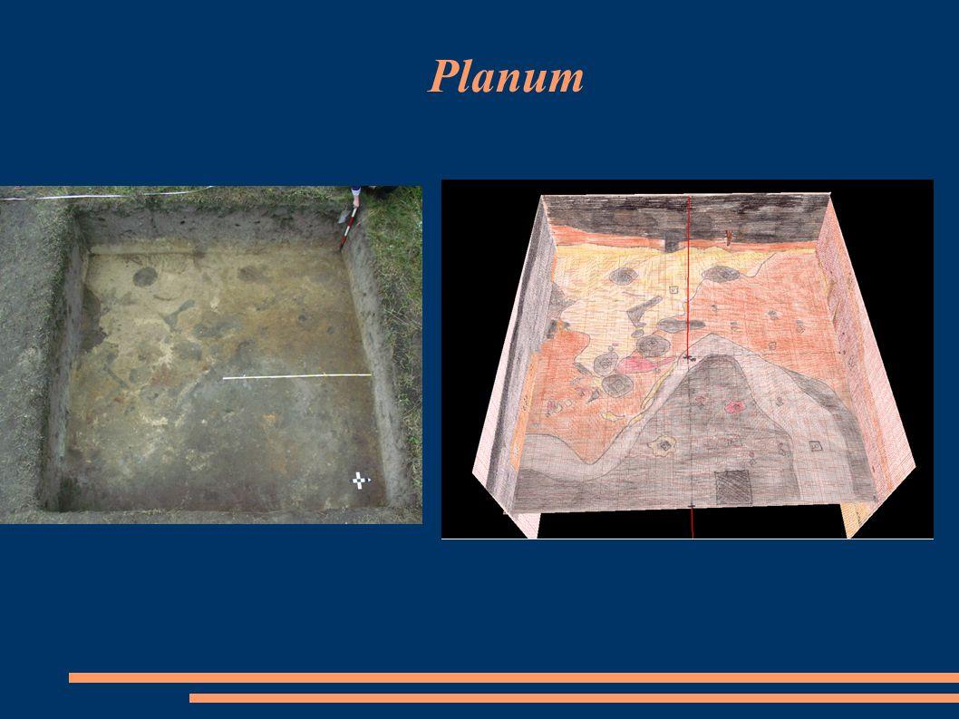Planum