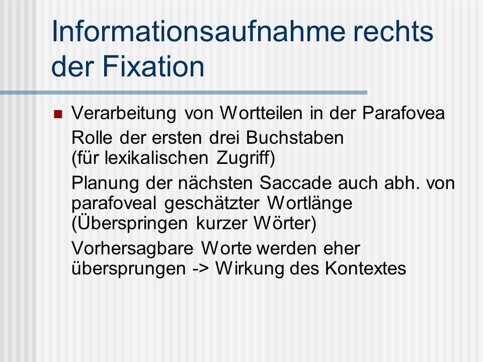 Informationsaufnahme rechts der Fixation Verarbeitung von Wortteilen in der Parafovea Rolle der ersten drei Buchstaben (für lexikalischen Zugriff) Planung der nächsten Saccade auch abh.