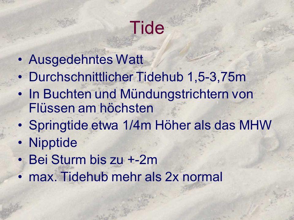 Tide Ausgedehntes Watt Durchschnittlicher Tidehub 1,5-3,75m In Buchten und Mündungstrichtern von Flüssen am höchsten Springtide etwa 1/4m Höher als da