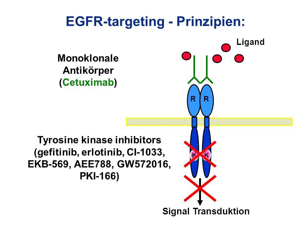 EGFR-targeting - Prinzipien: Tyrosine kinase inhibitors (gefitinib, erlotinib, CI-1033, EKB-569, AEE788, GW572016, PKI-166) Monoklonale Antikörper (Ce
