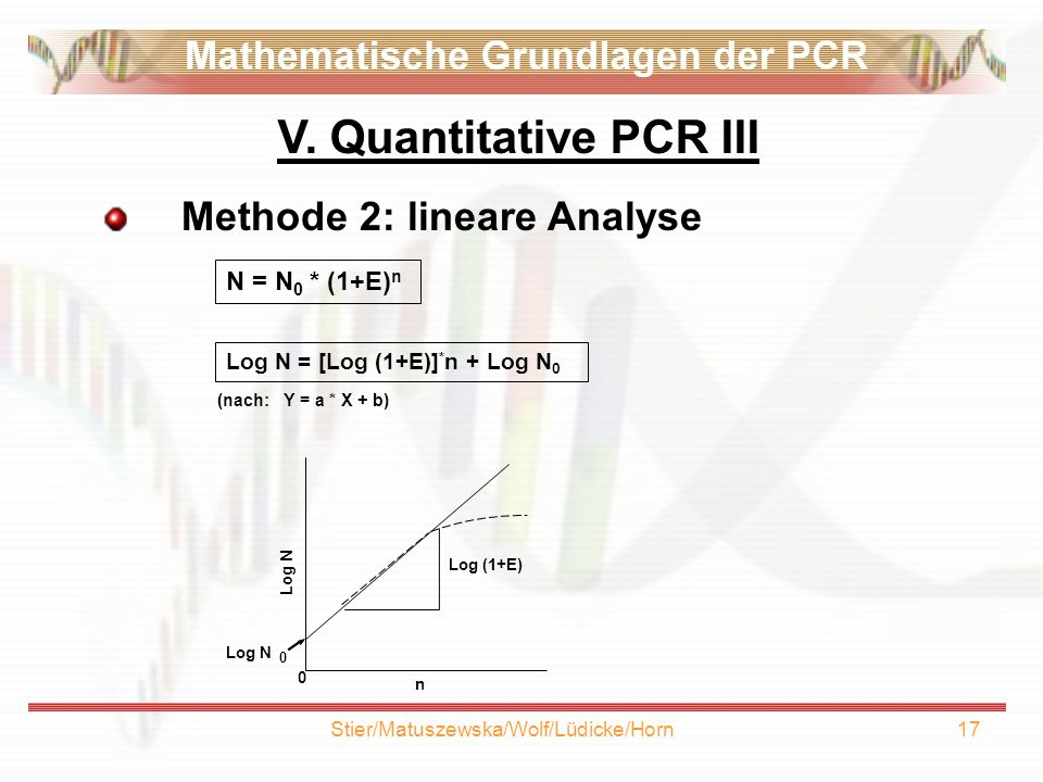 Stier/Matuszewska/Wolf/Lüdicke/Horn17 Methode 2: lineare Analyse N = N 0 * (1+E) n (nach: Y = a * X + b) Log N = [Log (1+E)] * n + Log N 0 n 0 Log N 0 Log (1+E) V.