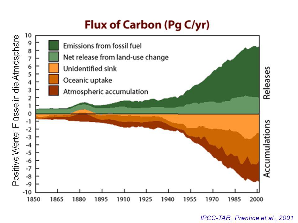 Positive Werte: Flüsse in die Atmosphäre IPCC-TAR, Prentice et al., 2001