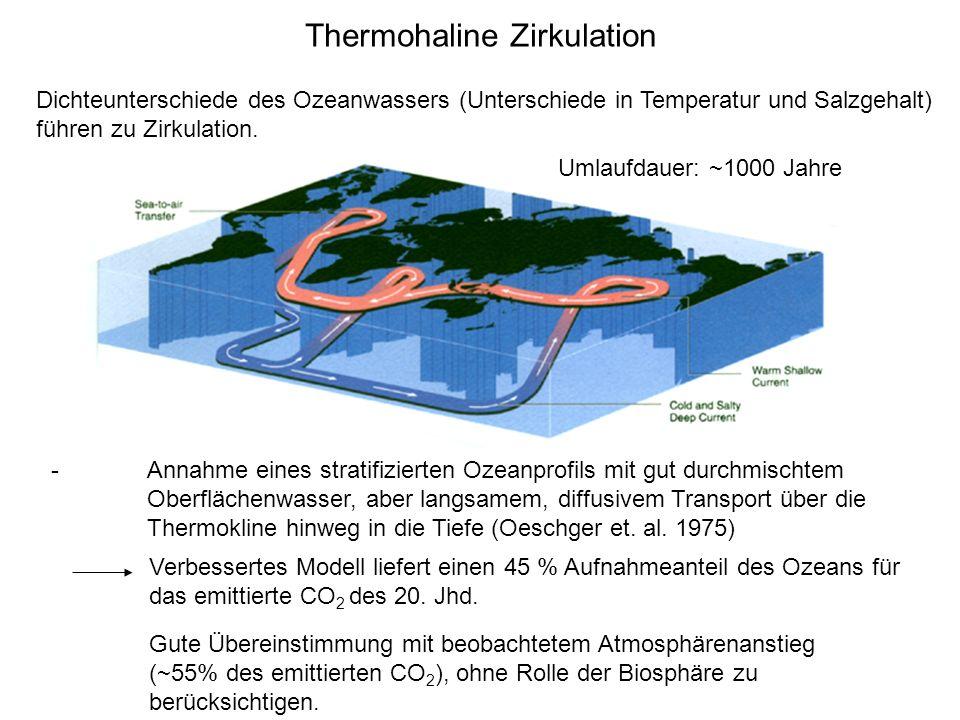 Thermohaline Zirkulation -Annahme eines stratifizierten Ozeanprofils mit gut durchmischtem Oberflächenwasser, aber langsamem, diffusivem Transport übe