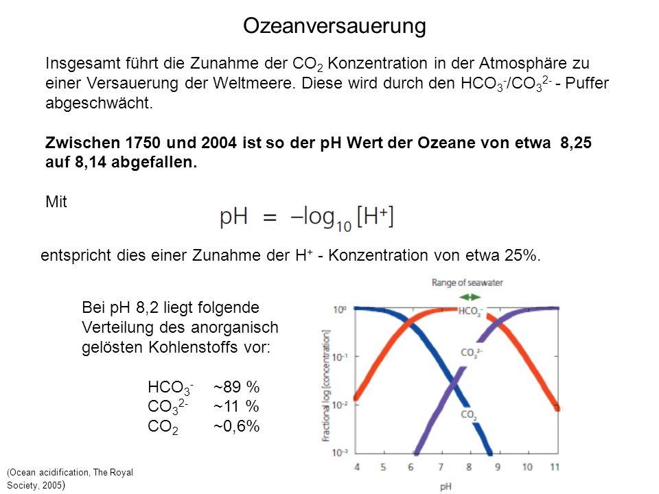 Insgesamt führt die Zunahme der CO 2 Konzentration in der Atmosphäre zu einer Versauerung der Weltmeere. Diese wird durch den HCO 3 - /CO 3 2- - Puffe