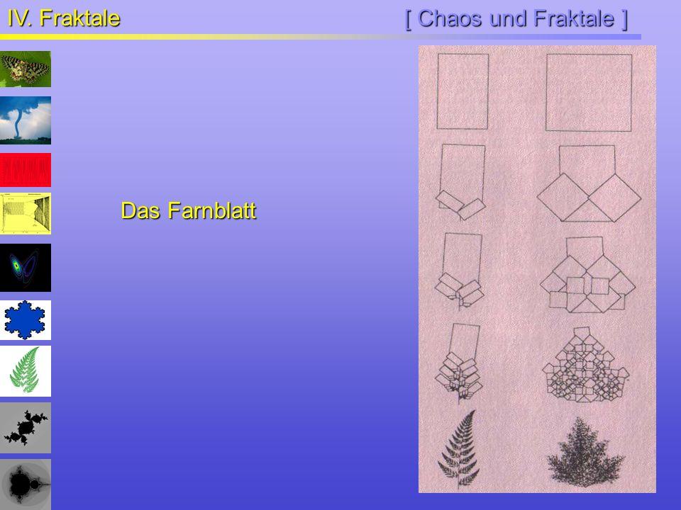 [ Chaos und Fraktale ] IV. Fraktale Das Farnblatt