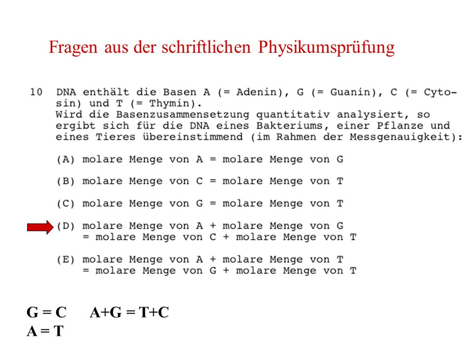 Fragen aus der schriftlichen Physikumsprüfung G = C A+G = T+C A = T