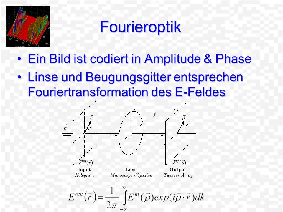 F Holographische Optische Pinzetten Ein Laserstrahl bewegt ein ObjektEin Laserstrahl bewegt ein Objekt Mehrere Objekte benötigen mehrere LaserMehrere Objekte benötigen mehrere Laser Beugungsmuster beliebiger Art können durch Gittermasken erzeugt werdenBeugungsmuster beliebiger Art können durch Gittermasken erzeugt werden Gittermaske ist mit Bildebene durch Fouriertrafo verknüpft.Gittermaske ist mit Bildebene durch Fouriertrafo verknüpft.