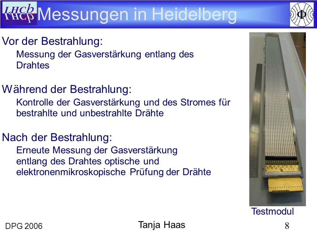 DPG 2006 8 Tanja Haas Messungen in Heidelberg Vor der Bestrahlung: Messung der Gasverstärkung entlang des Drahtes Während der Bestrahlung: Kontrolle der Gasverstärkung und des Stromes für bestrahlte und unbestrahlte Drähte Nach der Bestrahlung: Erneute Messung der Gasverstärkung entlang des Drahtes optische und elektronenmikroskopische Prüfung der Drähte Testmodul