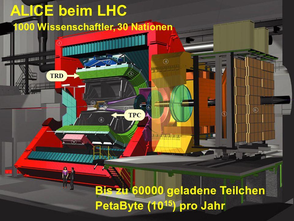 Nacht der Wissenschaft, Physikalisches Institut, Nov 10, 2007 Kai Schweda 10 Atomkerne aus Blei haben fast Lichtgeschwindigkeit (bis auf 30km/h) Kommen 10 000 mal pro Sekunde am Detektor vorbei 20 Milliarden Bleikerne pro Umlaufrichtung Beispiel:Lamborghini Diablo,0-100 km/h: 3 sec Formel 1 400 km/h:12 sec Concorde 2200 km/h: 1 min Large Hadron Collider 1 Milliarde km/h: 1 Jahr (!) Large Hadron Collider LHC am CERN