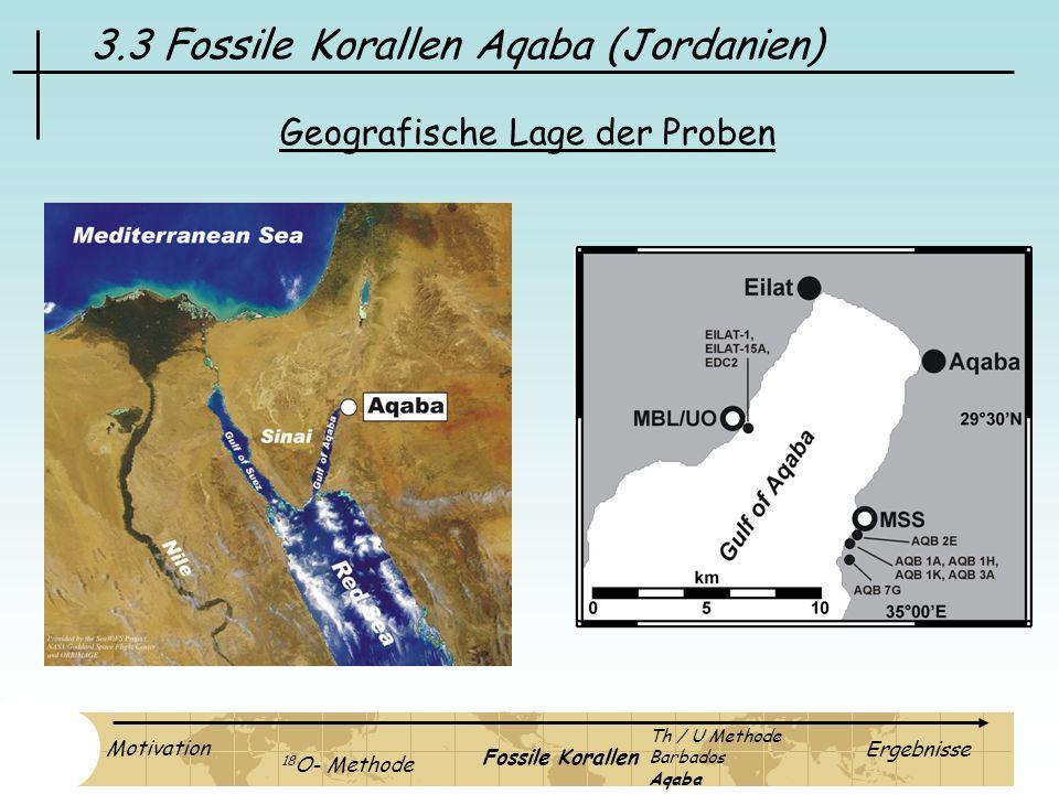 3.3 Fossile Korallen Aqaba (Jordanien) Geografische Lage der Proben Motivation 18 O- Methode Fossile Korallen Ergebnisse Th / U Methode Barbados Aqaba