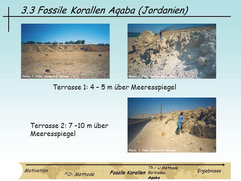 3.3 Fossile Korallen Aqaba (Jordanien) Terrasse 1: 4 – 5 m über Meeresspiegel Terrasse 2: 7 –10 m über Meeresspiegel Motivation 18 O- Methode Fossile