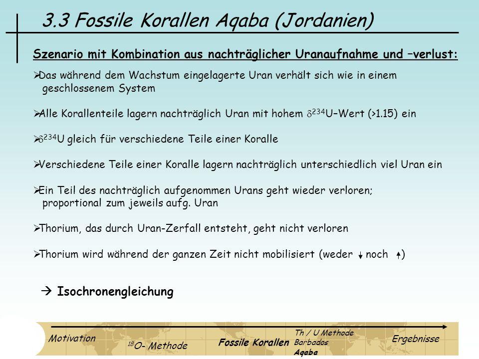 3.3 Fossile Korallen Aqaba (Jordanien) Szenario mit Kombination aus nachträglicher Uranaufnahme und –verlust: Das während dem Wachstum eingelagerte Ur