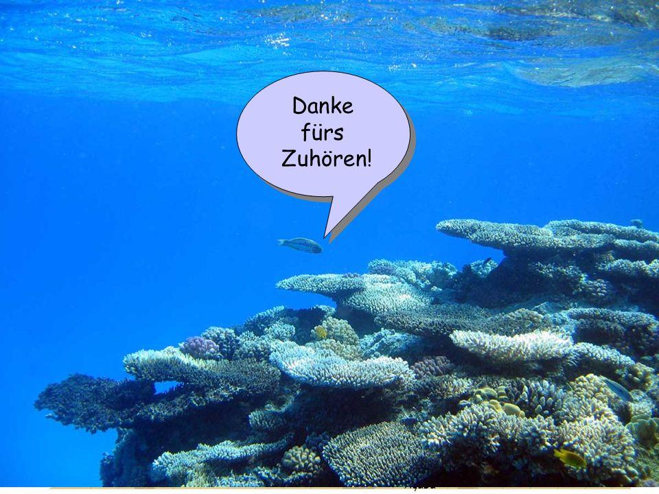Motivation 18 O- Methode Fossile Korallen Ergebnisse Th / U Methode Barbados Aqaba Danke fürs Zuhören! Danke fürs Zuhören!