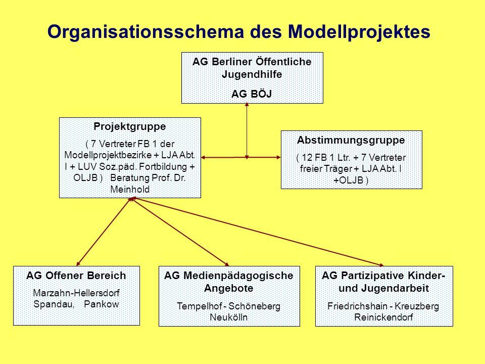 Organisationsschema des Modellprojektes Abstimmungsgruppe ( 12 FB 1 Ltr. + 7 Vertreter freier Träger + LJA Abt. I +OLJB ) Projektgruppe ( 7 Vertreter