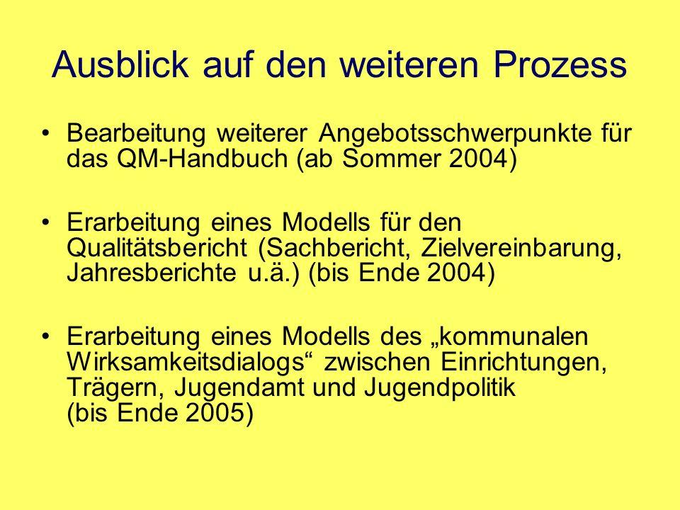 Ausblick auf den weiteren Prozess Bearbeitung weiterer Angebotsschwerpunkte für das QM-Handbuch (ab Sommer 2004) Erarbeitung eines Modells für den Qua
