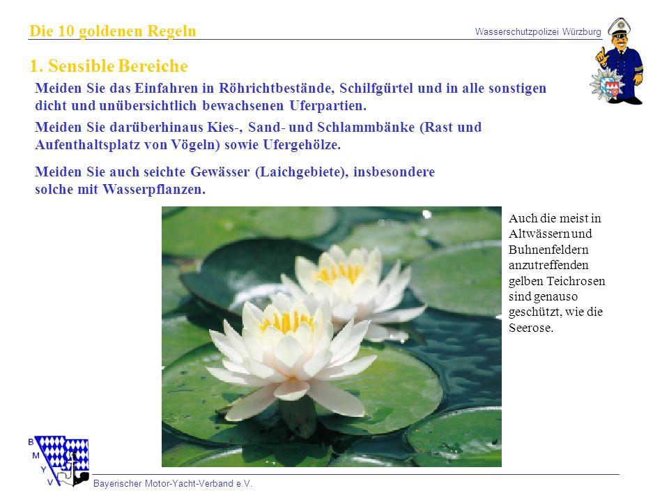 Wasserschutzpolizei Würzburg Bayerischer Motor-Yacht-Verband e.V. Die 10 goldenen Regeln 1. Sensible Bereiche Meiden Sie auch seichte Gewässer (Laichg