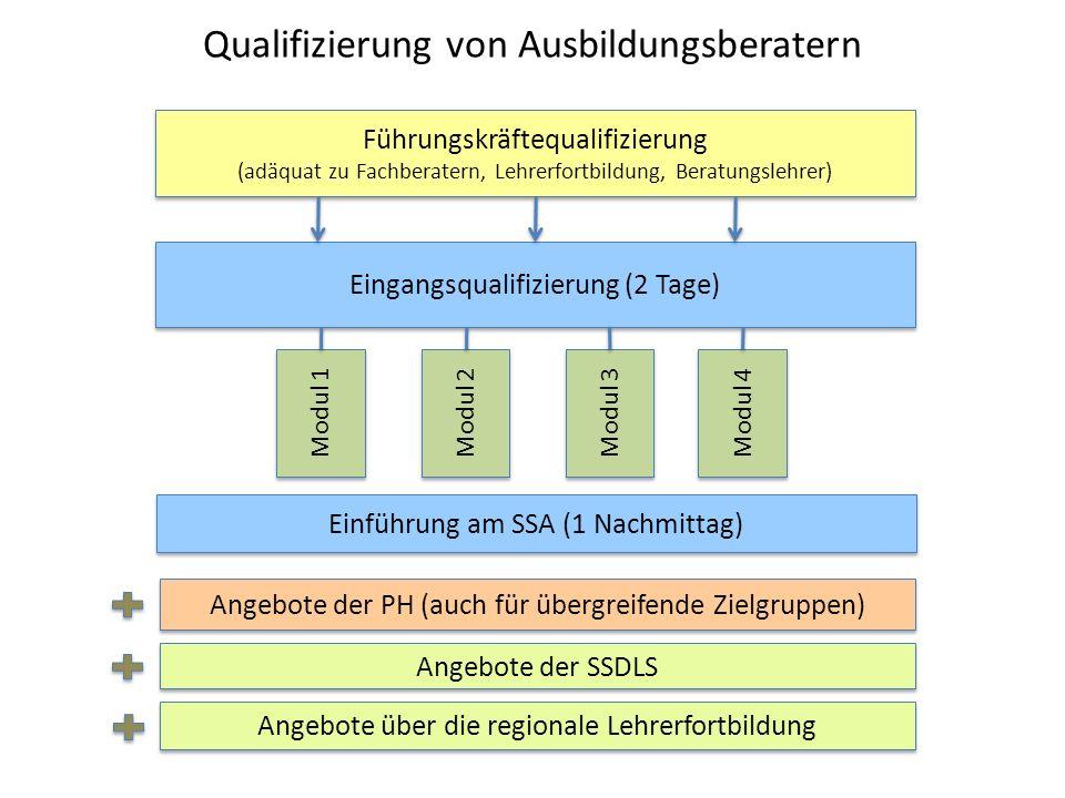 Qualifizierung von Ausbildungsberatern Führungskräftequalifizierung (adäquat zu Fachberatern, Lehrerfortbildung, Beratungslehrer) Eingangsqualifizieru