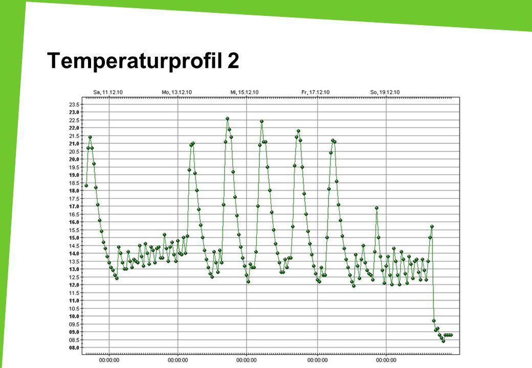 Temperaturprofil 2