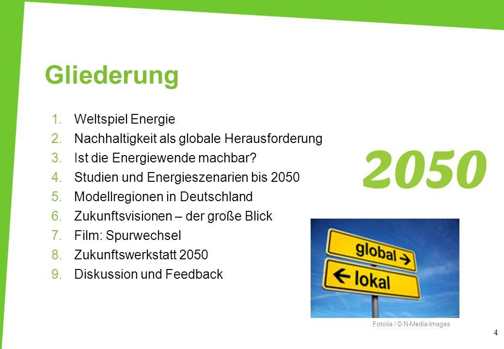 Vision: 100 % EE global 15 WBGU, Abb.