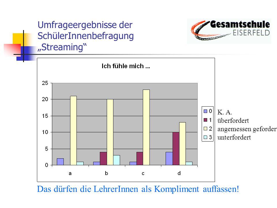 Umfrageergebnisse der SchülerInnenbefragung Streaming Ja weiß nicht nein Das erklärt die zunächst positive Resonanz aus der b.