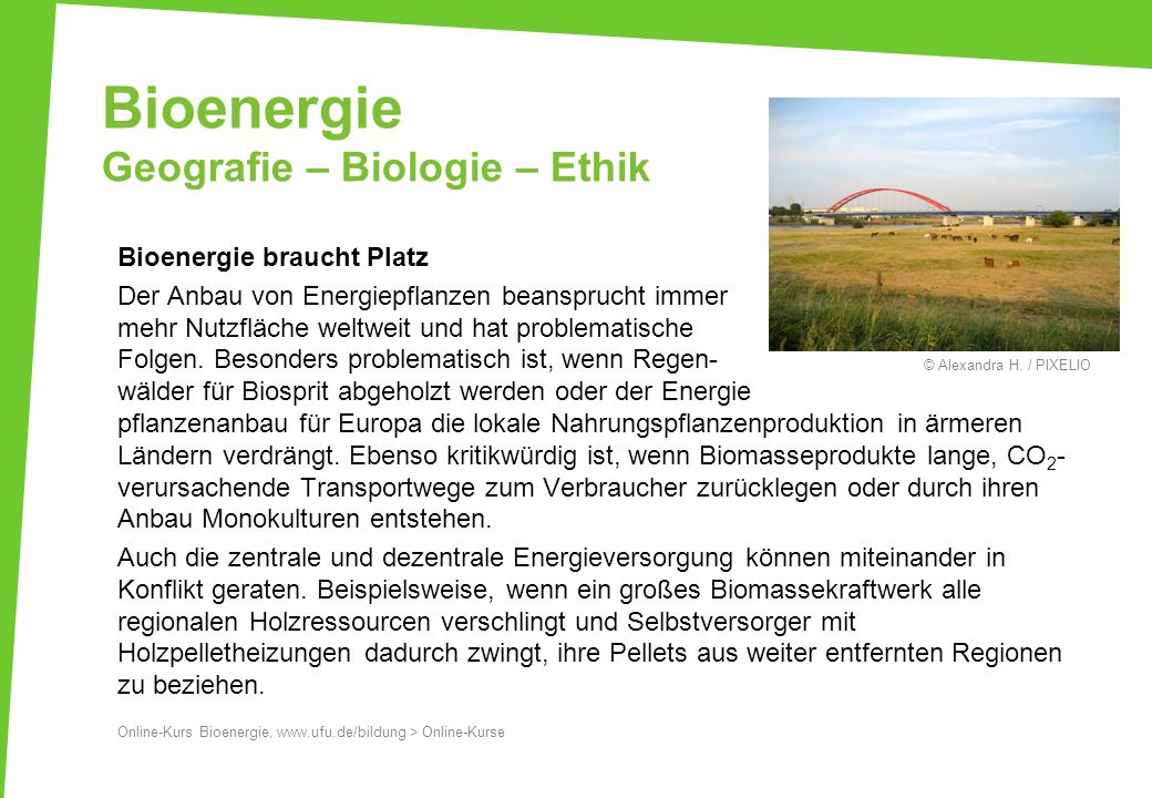Bioenergie Geografie – Biologie – Ethik Bioenergie braucht Platz Der Anbau von Energiepflanzen beansprucht immer mehr Nutzfläche weltweit und hat prob