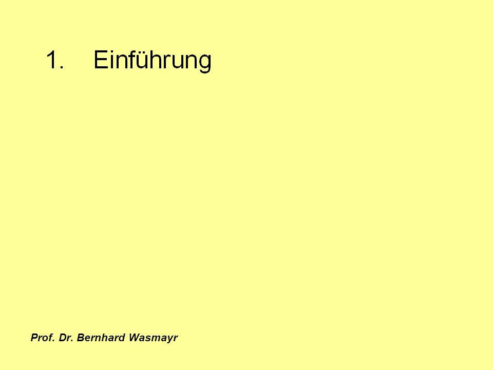 Prof. Dr. Bernhard Wasmayr Seite 17 1. Einführung