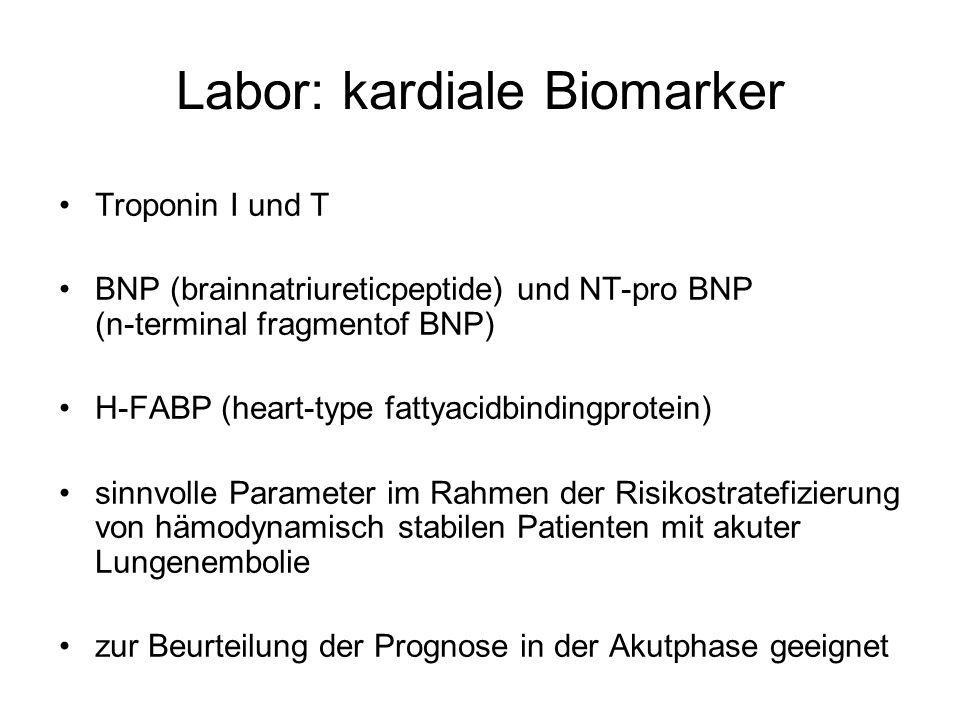 Labor: kardiale Biomarker Troponin I und T BNP (brainnatriureticpeptide) und NT-pro BNP (n-terminal fragmentof BNP) H-FABP (heart-type fattyacidbindingprotein) sinnvolle Parameter im Rahmen der Risikostratefizierung von hämodynamisch stabilen Patienten mit akuter Lungenembolie zur Beurteilung der Prognose in der Akutphase geeignet