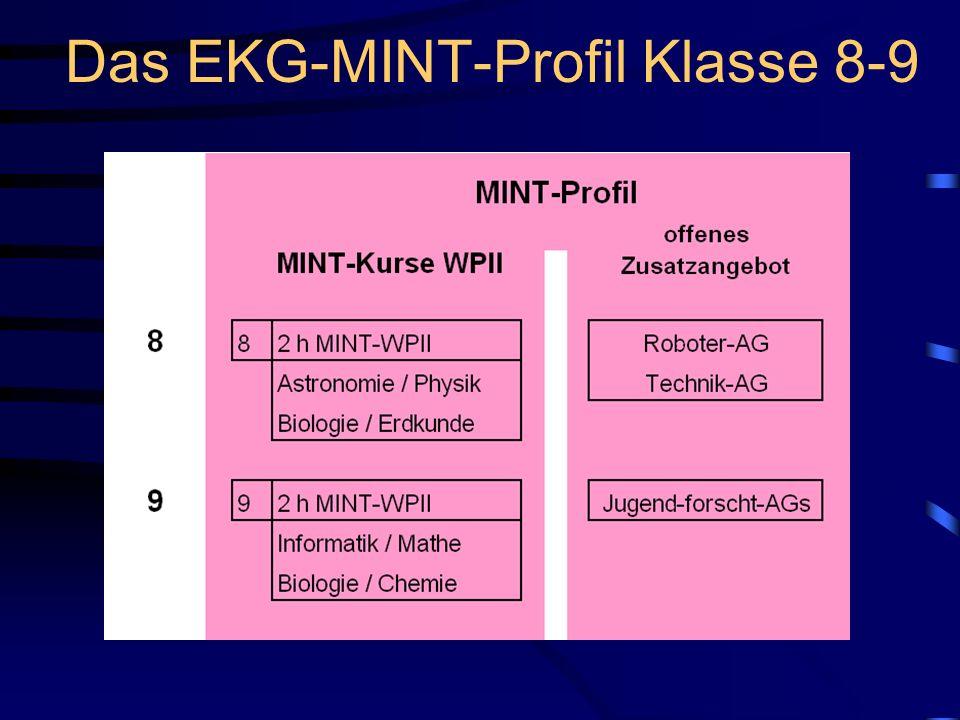 Das EKG-MINT-Profil Klasse 8-9