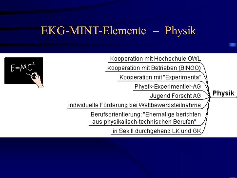 EKG-MINT-Elemente – Physik