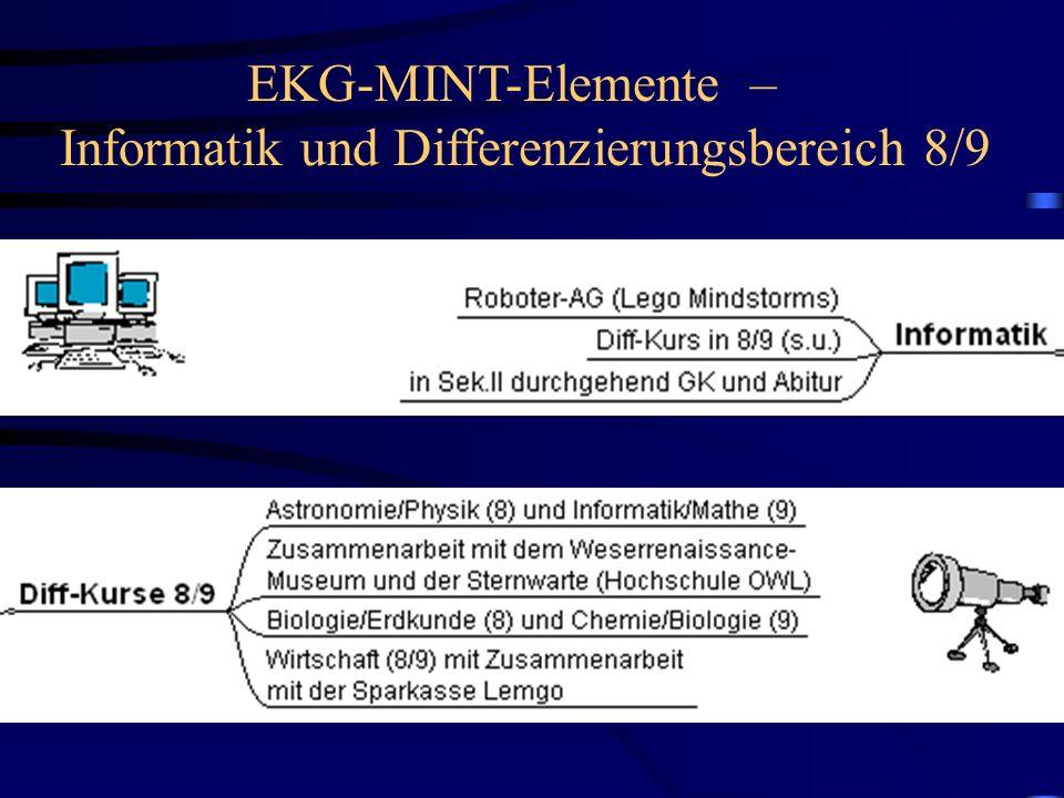 EKG-MINT-Elemente – Informatik und Differenzierungsbereich 8/9