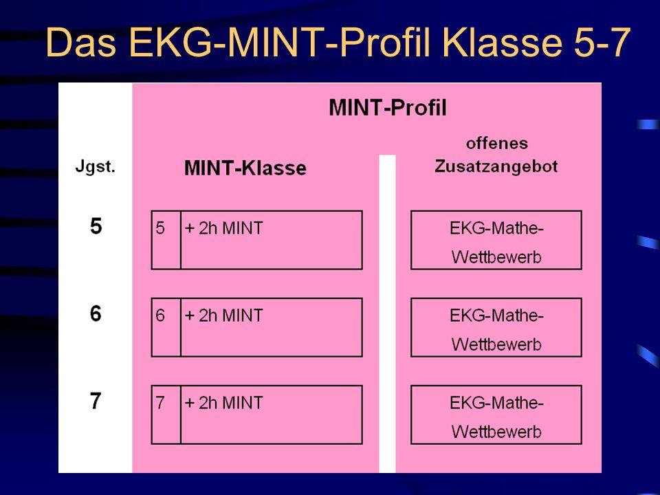 Das EKG-MINT-Profil Klasse 5-7