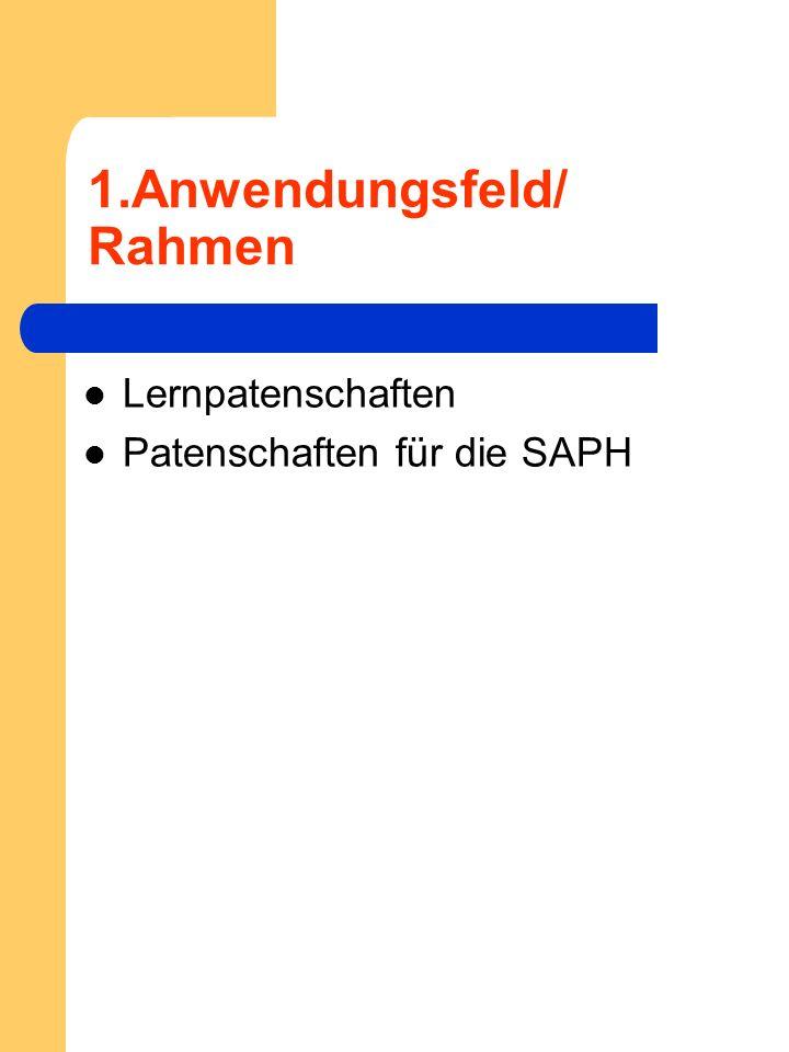 1.Anwendungsfeld/ Rahmen Lernpatenschaften Patenschaften für die SAPH