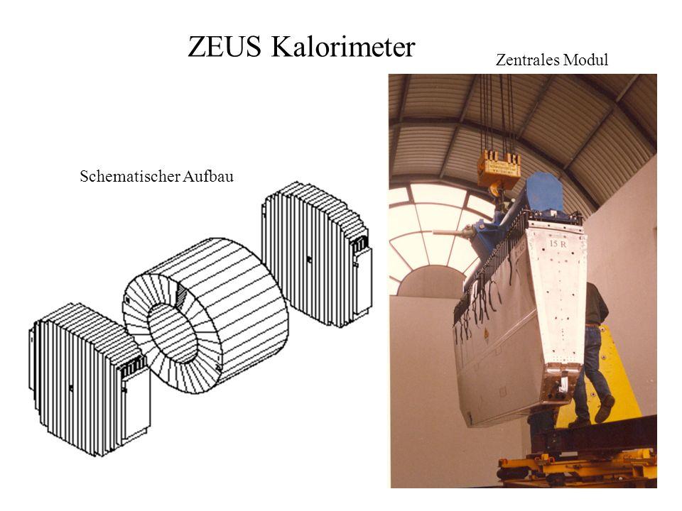 ZEUS Kalorimeter Schematischer Aufbau Zentrales Modul