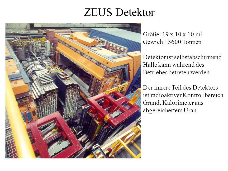 ZEUS Detektor Größe: 19 x 10 x 10 m 3 Gewicht: 3600 Tonnen Detektor ist selbstabschirmend Halle kann während des Betriebes betreten werden.