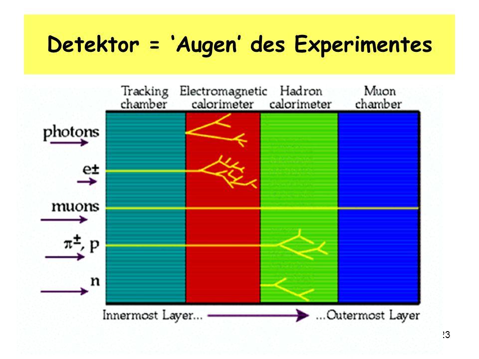 12.2.08 S. RiemannTechnisches Seminar: Teilchenphysik23 Detektor = Augen des Experimentes