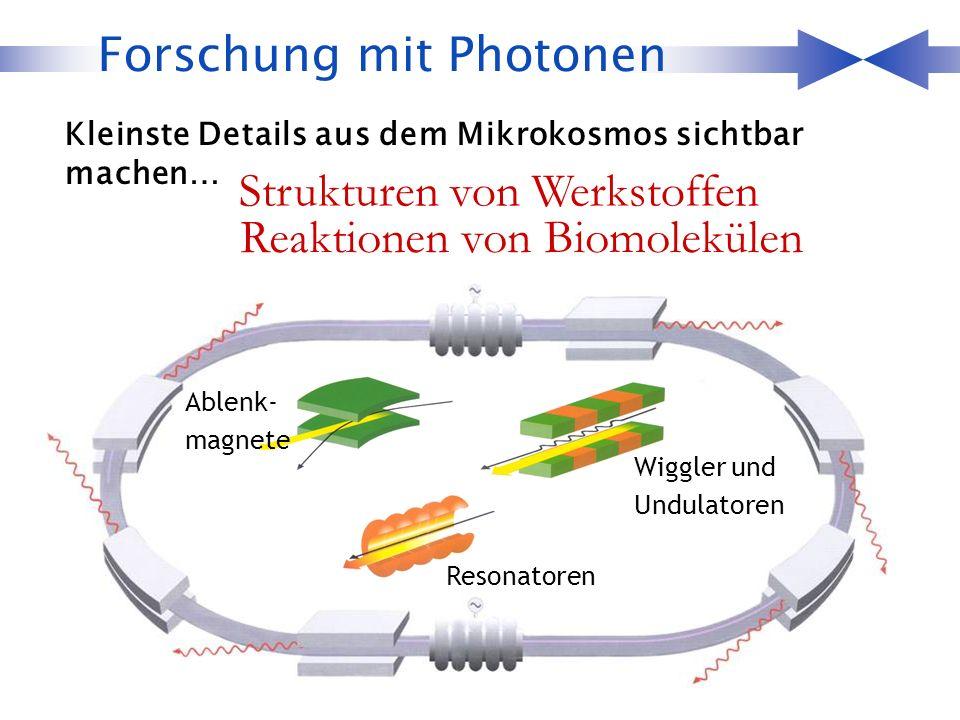 Forschung mit Photonen Kleinste Details aus dem Mikrokosmos sichtbar machen… Strukturen von Werkstoffen Reaktionen von Biomolekülen Resonatoren Ablenk- magnete Wiggler und Undulatoren