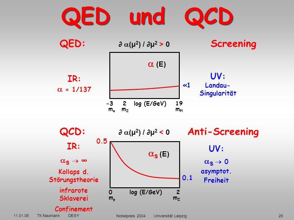 11.01.05 Th.Naumann DESY Nobelpreis 2004 Universität Leipzig24 QED und QCD b 0 = -4/3 (Q 2 ) / Q 2 > 0 b 0 = (-2N F + 11N C )/3 (Q 2 ) / Q 2 < 0 Gluon