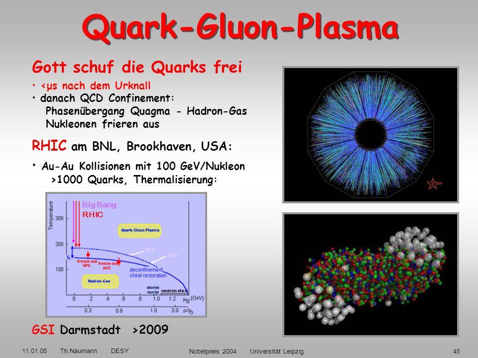 11.01.05 Th.Naumann DESY Nobelpreis 2004 Universität Leipzig44 DESY Experimente H1+ZEUS: QCD-Fit der Skalenverletzungen: s = 0.115 ± 0.002 (exp.+fit)